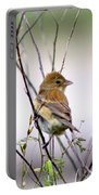 3571 - Tanager Portable Battery Charger