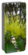 Australia - Pollinating A Green Leionema Flower Portable Battery Charger