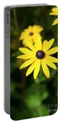 Fine Art Portable Battery Charger
