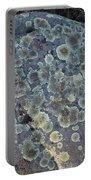 3da5793-dc Lichen On Rock Portable Battery Charger