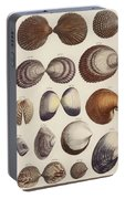 Aquatic Animals - Seafood - Shells - Mussels Portable Battery Charger