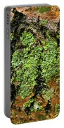 Aspen Bark After The Rain Portable Battery Charger