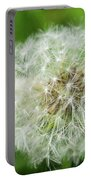 Dandelion Close-up. Portable Battery Charger