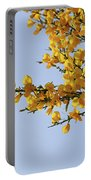 Ginestre Portable Battery Charger