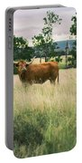 Longhorn Cow In The Paddock Portable Battery Charger