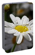 Marguerite Daisy Portable Battery Charger