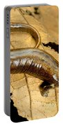 Nauta Palm Foot Salamander Portable Battery Charger