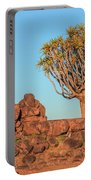 Quiver Tree Forest - Namibia Portable Battery Charger