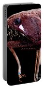 Threadfin Dragonfish Portable Battery Charger