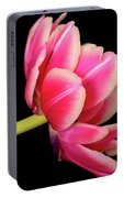Tulip  Macro Portable Battery Charger