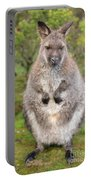 Wallaby Outside By Itself Portable Battery Charger
