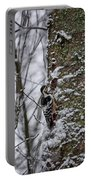 White-backed Woodpecker Portable Battery Charger