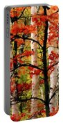 Painted Landscape Portable Battery Charger
