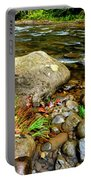 Fall Along Williams River Portable Battery Charger