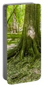 cypress forest and swamp of Congaree National Park in South Caro Portable Battery Charger