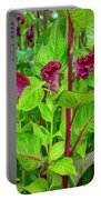 4398- Flowers Portable Battery Charger