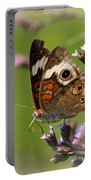 4467 - Butterfly Portable Battery Charger