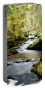 Nature Art Portable Battery Charger