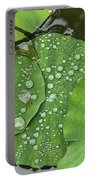 4634- Lilypad Portable Battery Charger