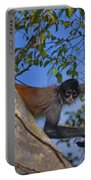 48- Capuchin Monkey Portable Battery Charger