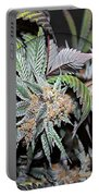 Cannabis 420 Collection Portable Battery Charger