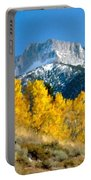 D C Landscape Portable Battery Charger
