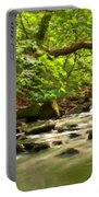 Framed Landscape Portable Battery Charger