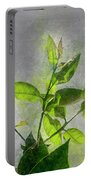 Fresh Growth Of Healthy Green Leafs  Portable Battery Charger