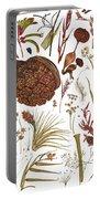 Herbarium Specimen Portable Battery Charger