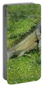 I Iguana Portable Battery Charger