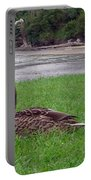 New Zealand - Mallard Ducks On The Grass Portable Battery Charger