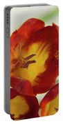 Red Freesia Portable Battery Charger