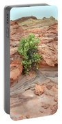 Sandstone Color In Valley Of Fire Portable Battery Charger