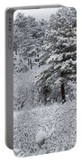 Snowstorm In The Pike National Forest Portable Battery Charger