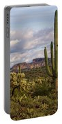 Sonoran Desert  Portable Battery Charger