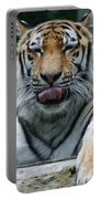 Tiger Portable Battery Charger