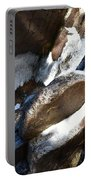 Trail To Tokopah Falls Portable Battery Charger