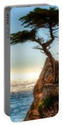 Walls Landscape Portable Battery Charger