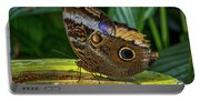 5113- Butterfly Portable Battery Charger