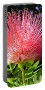 Australia - Caliandra Red Flower Portable Battery Charger