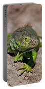 52- Green Iguana  Portable Battery Charger