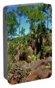 55- Everglades Afternoon Portable Battery Charger