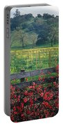 5b6301 Vineyards Of Color Portable Battery Charger
