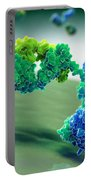 Antibody 1igt Portable Battery Charger