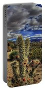 Anza-borrego Desert State Park Portable Battery Charger