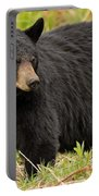 Maine Black Bear Portable Battery Charger