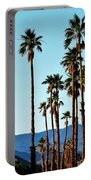 Palm Springs Portable Battery Charger