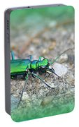6-spotted Green Tiger Beetle Portable Battery Charger