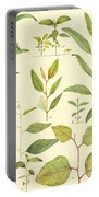Vintage Botanical Illustration Portable Battery Charger