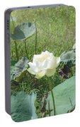 White Lotus Flower Flower Lotus Nature Summer Green Plant Blossom Asian Portable Battery Charger